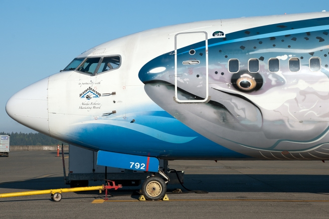 Alaskan Airline's Wild Alaskan Salmon 737 - Note the Alaskan Fisheries Marketing Board Logo just below the Captain's side window.